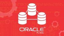 مدخل الى Oracle PL\SQL